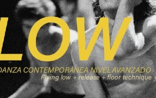 04-FLOW-banner